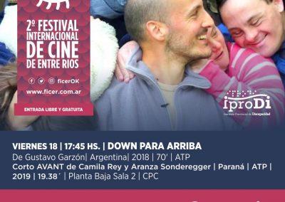 Down para arriba_ Viernes 18_ Ficer